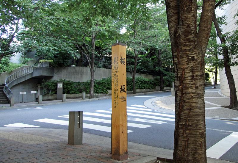 130707_sakurazaka5