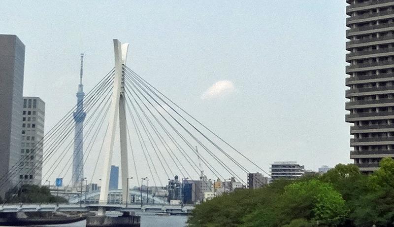 140419_sumidagawa1