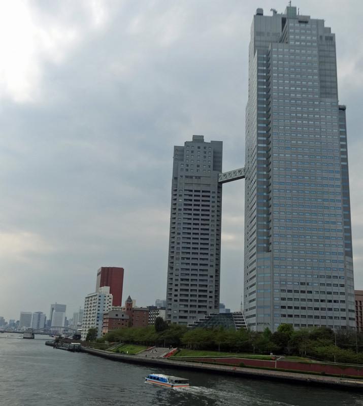 140419_sumidagawa2