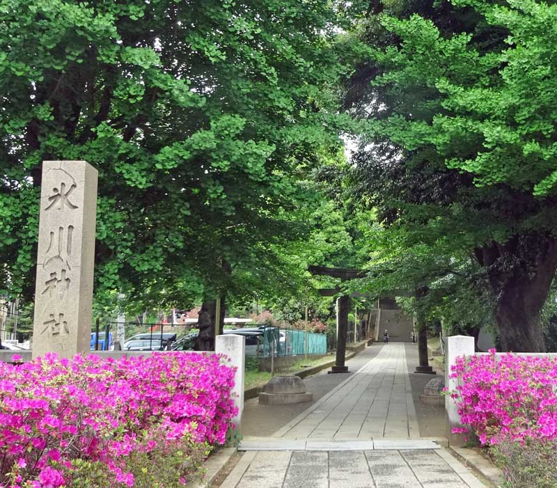 140505_hikawa
