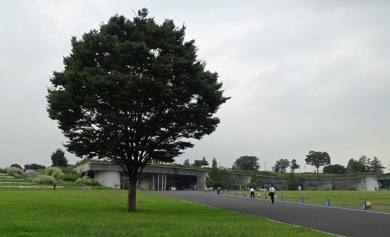140910_syouwapark