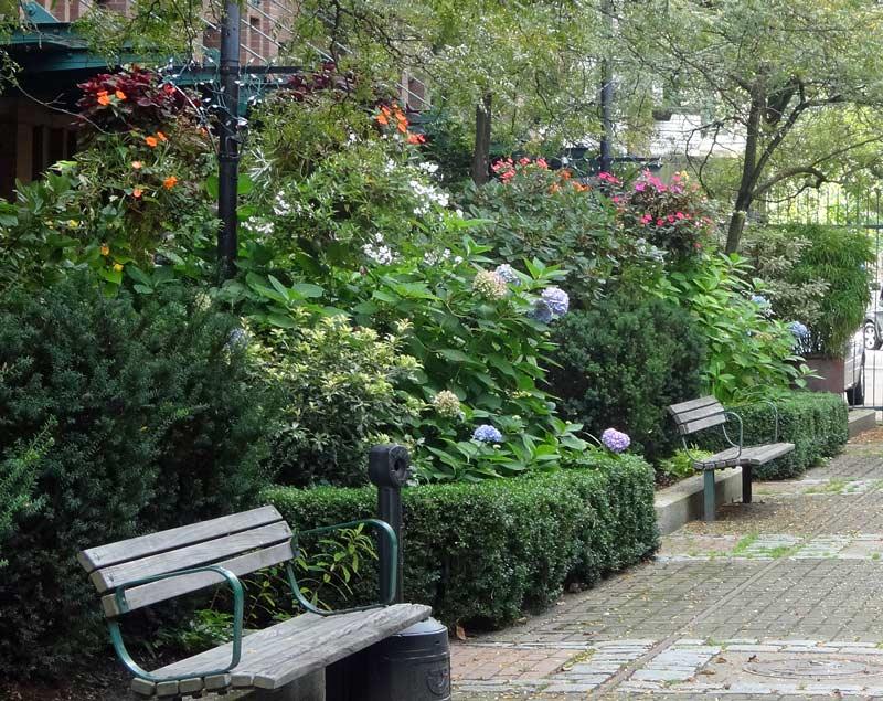 140926_garden