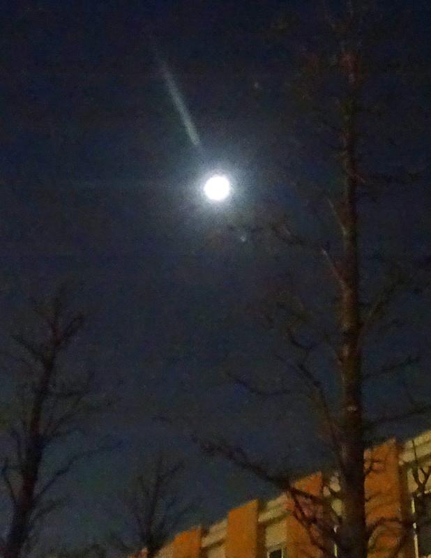 141129_moon1