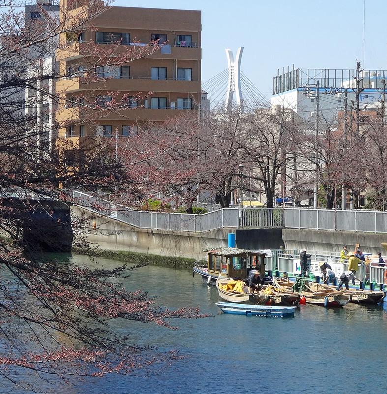 150326_ooyokogawa