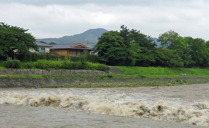 150718_kamogawa1