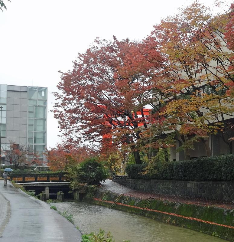 151102_torii