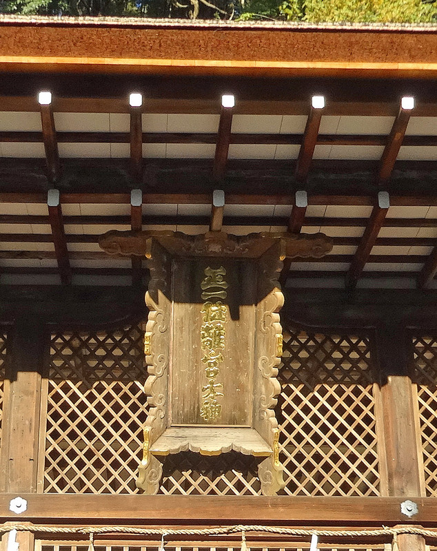 151206_ookami