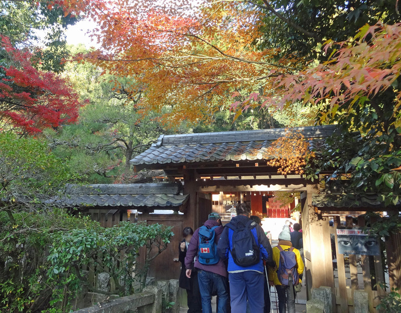 151206_ujikami