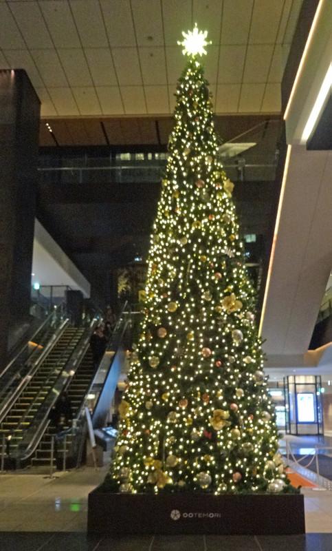 151211_tree1
