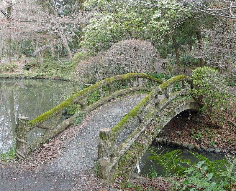 160327_bridge