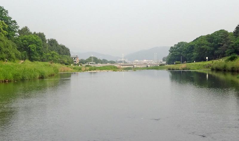 160528_kamogawa2