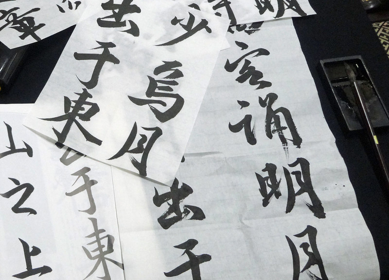 161110_syodou