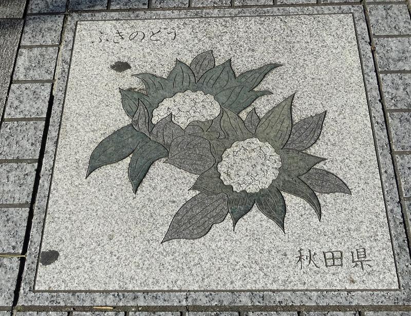 161203_akita