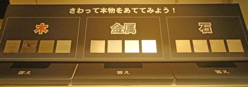 170204_sawaru